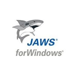 JAWS USB Dongle